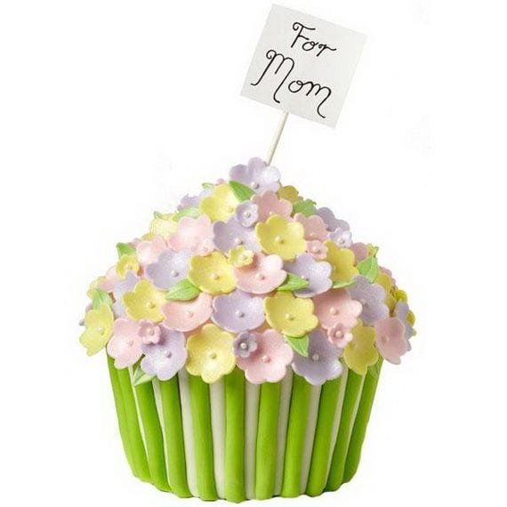 Cupcakes mom