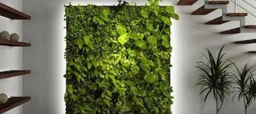 Ideas de dise os para jardines verticales curso de for Ideas para jardines verticales