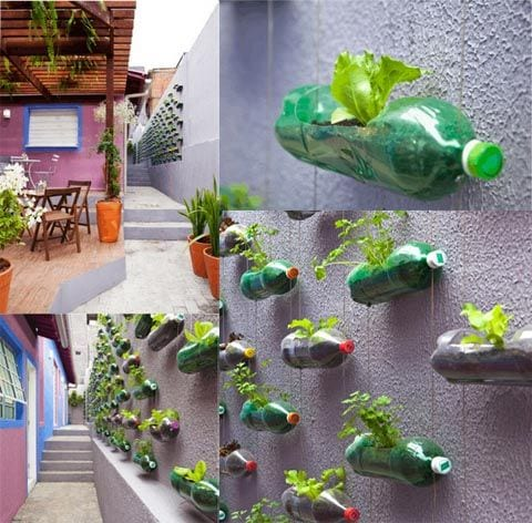Ideas de como reciclar botellas paso a paso curso de for Decoracion del hogar paso a paso