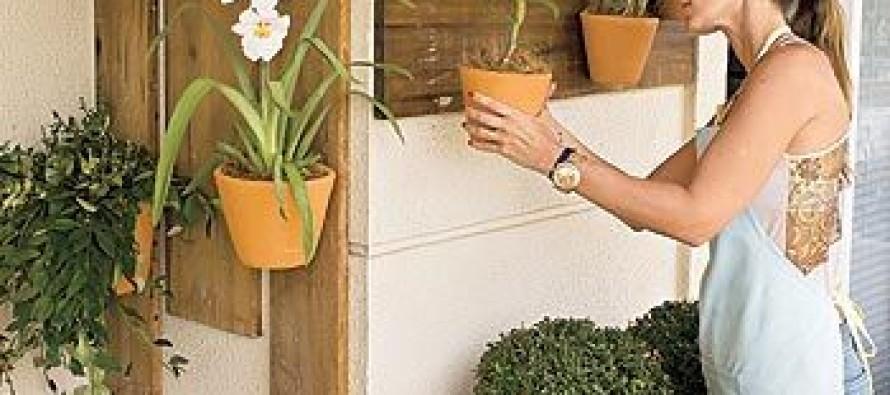 Como organizar el jardin