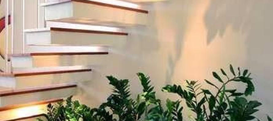 Jardines interiores bajo escaleras curso de organizacion - Decoracion escaleras de interior ...