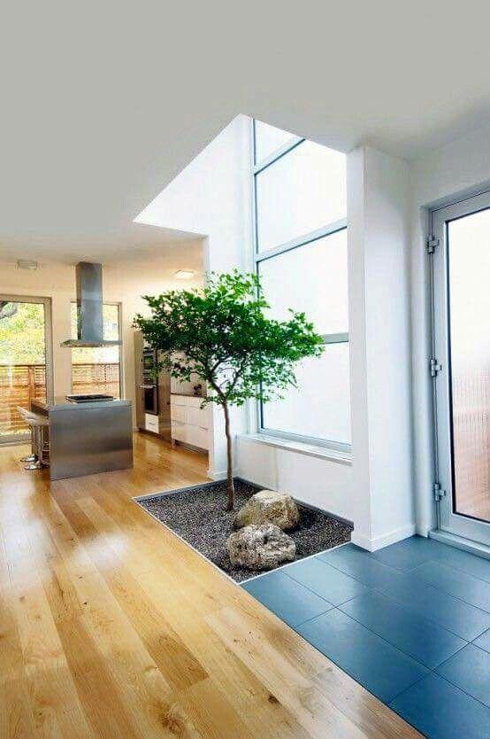 Cubos de luz curso de organizacion del hogar y for Jardines de pared para interiores
