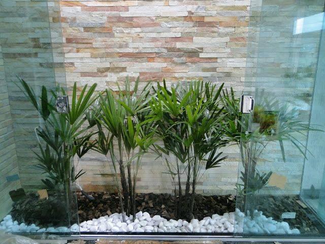 Ideas de jardines y patios interiores 14 curso de for Jardines interiores