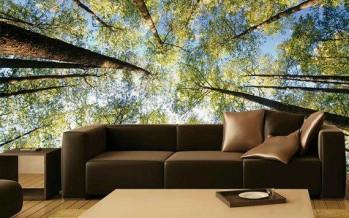 Fotomurales asombrosos para decorar tu hogar