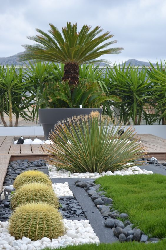 ideas para dise ar jardines deserticos 11 curso de organizacion del hogar y decoracion de. Black Bedroom Furniture Sets. Home Design Ideas