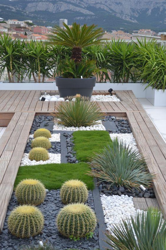 ideas para dise ar jardines deserticos 28 curso de organizacion del hogar y decoracion de. Black Bedroom Furniture Sets. Home Design Ideas