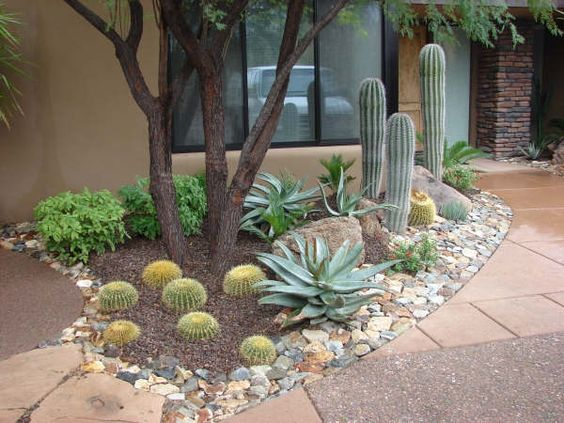 Dise o de jardines deserticos casa dise o for Disenar jardin online