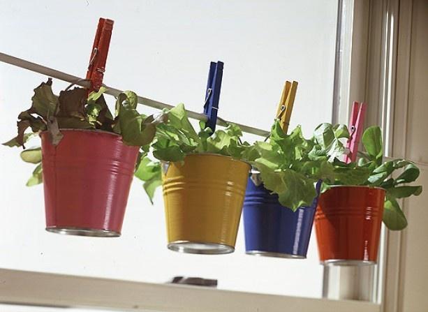 Diy decoraciones con plantas para tu hogar 1 curso de for Decoraciones para tu hogar