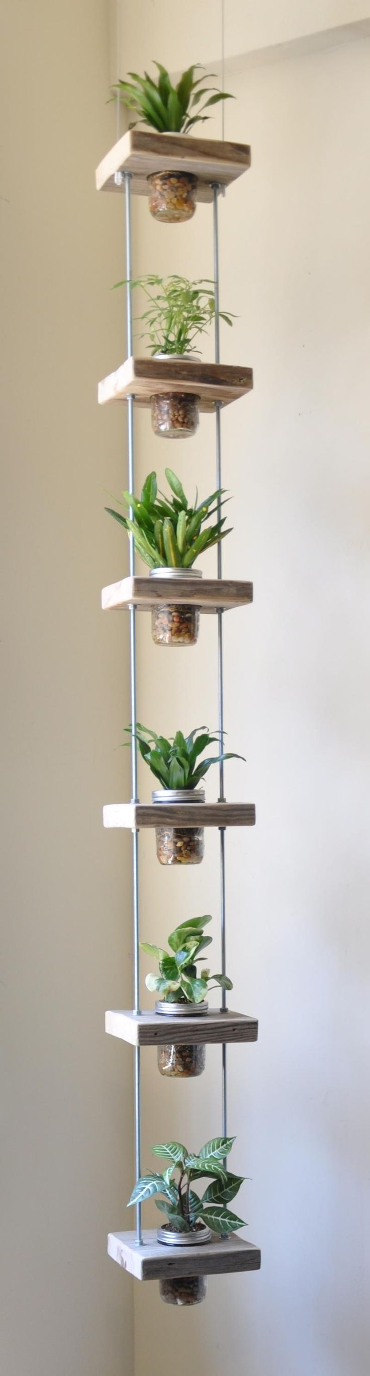 Diy decoraciones con plantas para tu hogar 20 curso de for Decoraciones para tu hogar