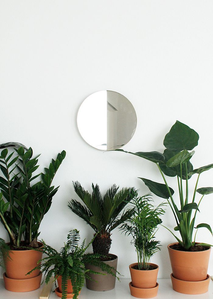 Ideas para decorar tu hogar con macetas 1 curso de for Macetas para interiores hogar