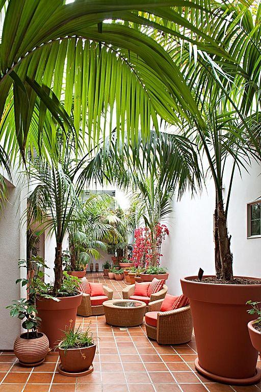 Ideas para decorar tu hogar con macetas 2 curso de for Macetas para interiores hogar