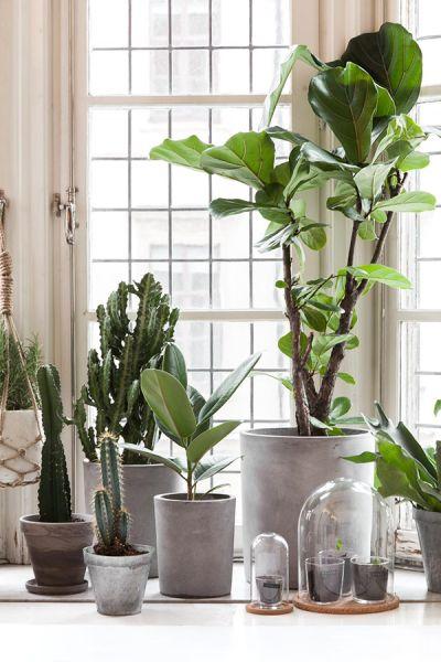 Ideas para decorar tu hogar con macetas 26 curso de for Macetas para interiores hogar