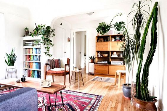 Ideas para decorar tu hogar con macetas 31 curso de for Macetas para interiores hogar