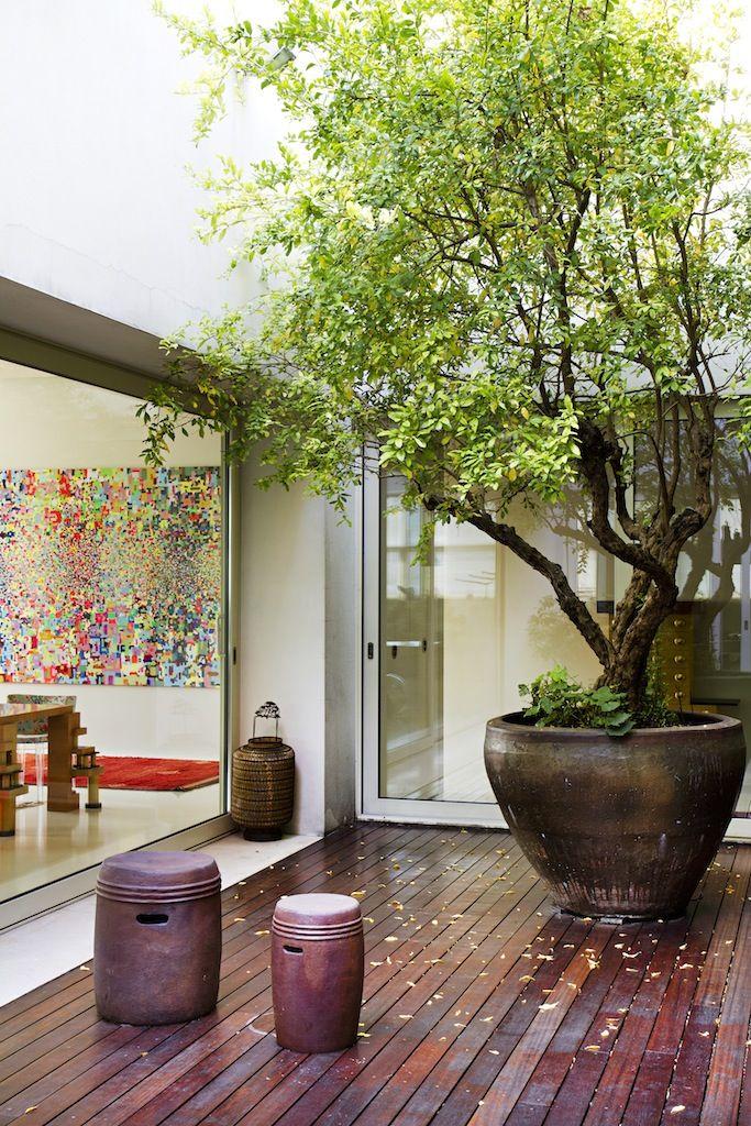 Ideas para decorar tu hogar con macetas 4 curso de for Decoracion de patios pequenos con macetas