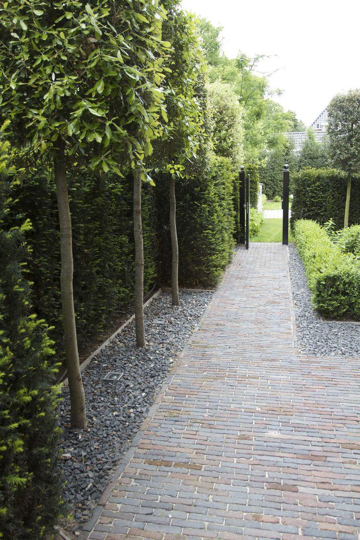 Ideas para remodelar tu jardin 11 curso de for Como remodelar mi jardin