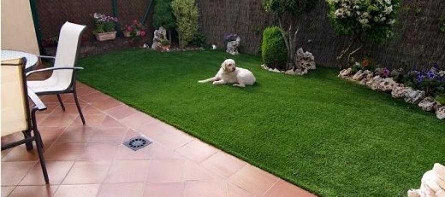 Ideas para remodelar tu jardin curso de organizacion del for Como remodelar mi jardin