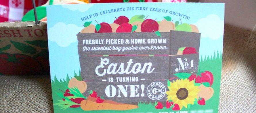 Fiesta de un año con tema de granja