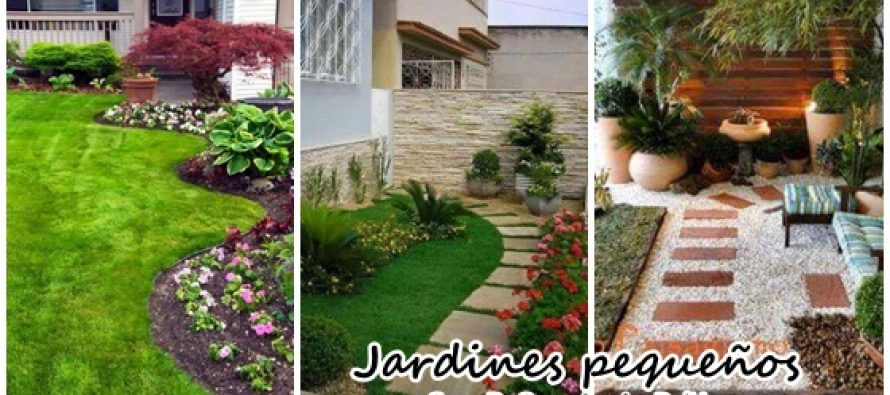 Dise o y decoraci n de jardines peque os curso de for Decoracion de jardin pequeno sencillo
