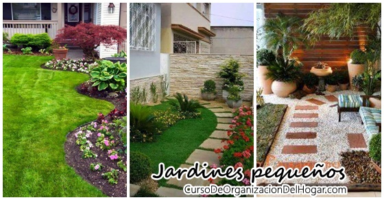 Dise o y decoraci n de jardines peque os curso de organizacion del hogar y decoracion de - Diseno de jardines exteriores para espacios pequenos ...