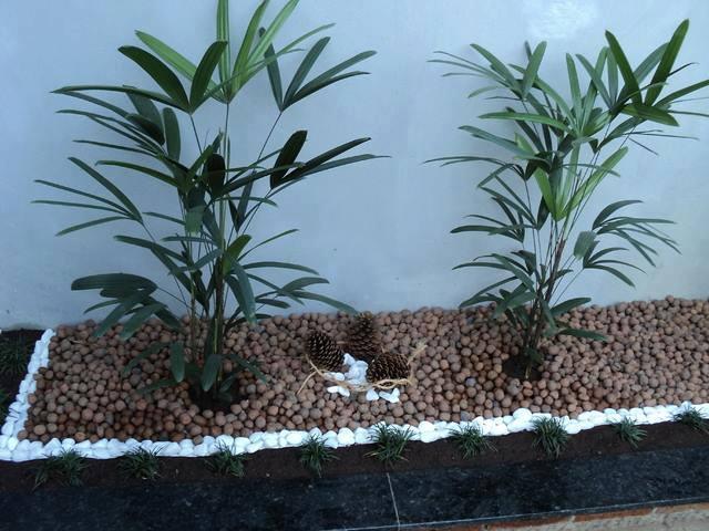 Jardines secos con piedras 2 curso de organizacion del for Jardines secos modernos