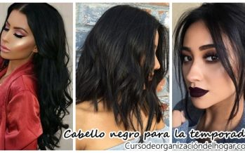 Cabello negro ideal para la temporada