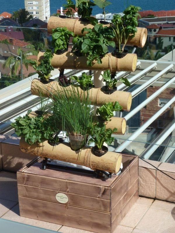 Dise a tu propio jardin de hortalizas 13 curso de - Disena tu hogar ...