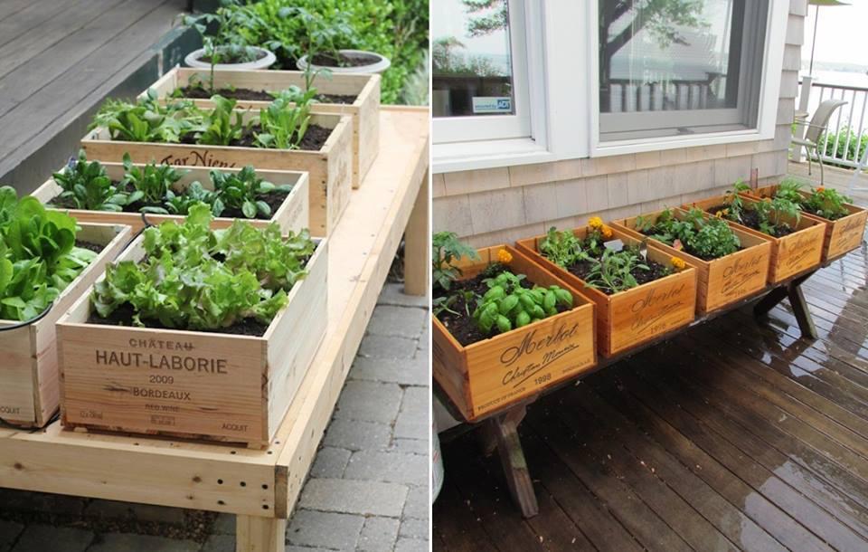Dise a tu propio jardin de hortalizas 22 curso de organizacion del hogar y decoracion de - Disena tu hogar ...
