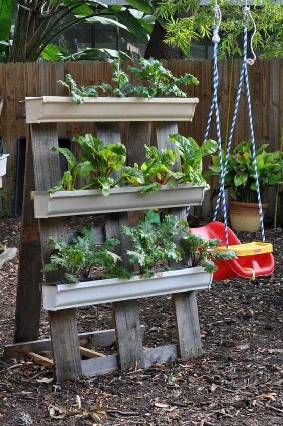 Dise a tu propio jardin de hortalizas 23 curso de - Disena tu jardin ...