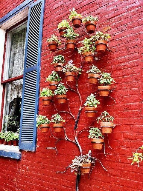 Dise a tu propio jardin de hortalizas 25 curso de - Disena tu jardin ...