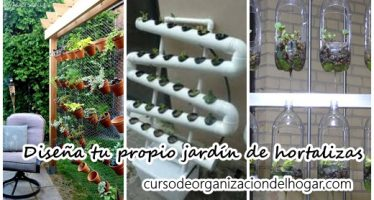 Diseña tu propio jardín de hortalizas