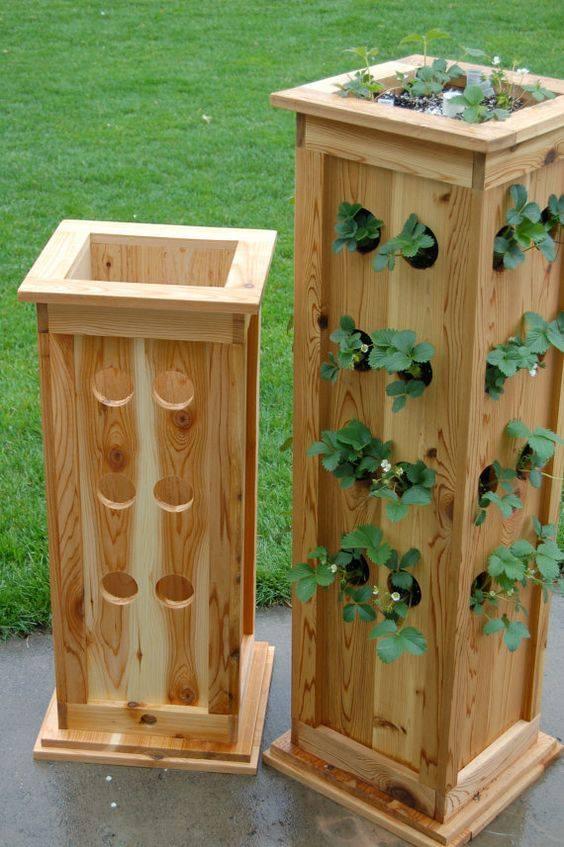 Dise a tu propio jardin de hortalizas 7 curso de - Disena tu jardin ...