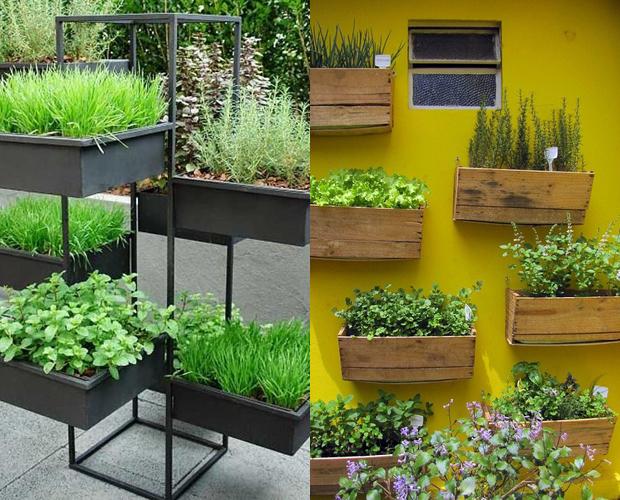 Dise a tu propio jardin de hortalizas 8 curso de - Disena tu jardin ...