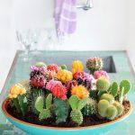 26 Ideas para decorar interiores con cactus