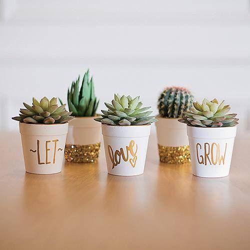 26 ideas para decorar interiores con cactus 18 curso - Ideas para decorar interiores ...