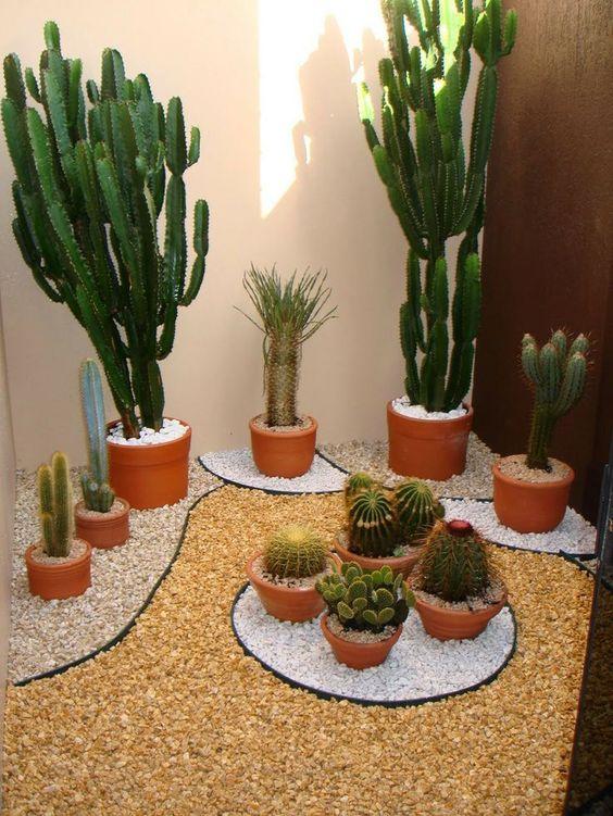 26-ideas-para-decorar-interiores-con-cactus (20) - Curso de ...