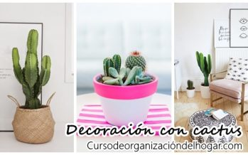 26 Ideas para decorar interiores con cactus