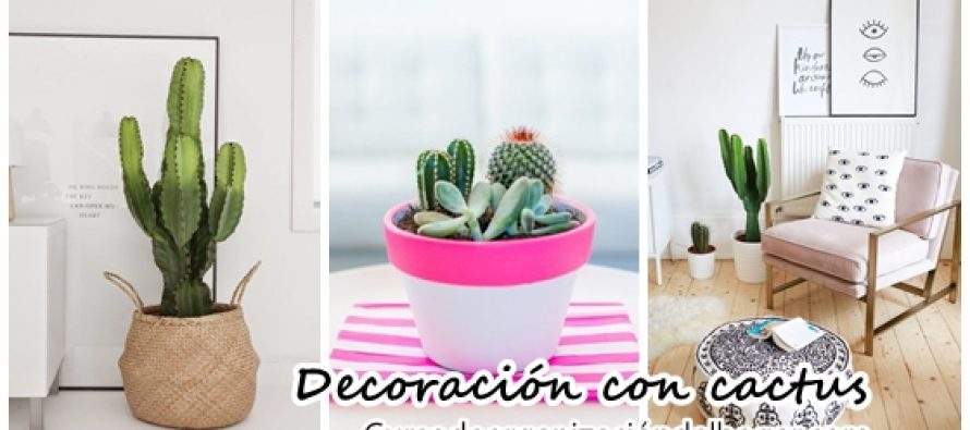 26 ideas para decorar interiores con cactus curso de for Cactus decoracion