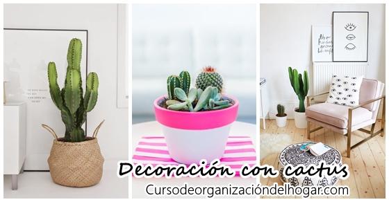 26 ideas para decorar interiores con cactus curso de organizacion del hogar y decoracion de - Curso decoracion interiores ...