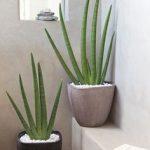 30 Ideas para decorar tu baño con plantas