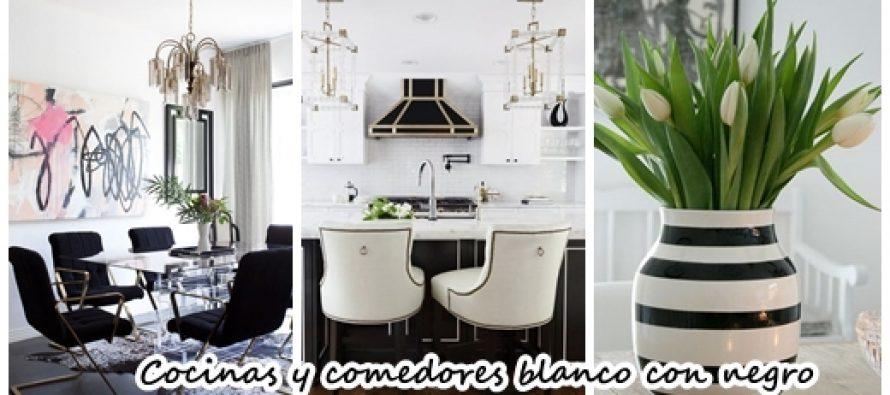Comedores Blanco Y Negro - geografic.info