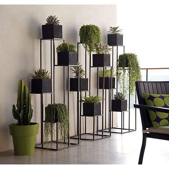 Decoraciones con plantas que debes intentar ya en tu hogar for Decoracion del hogar con plantas