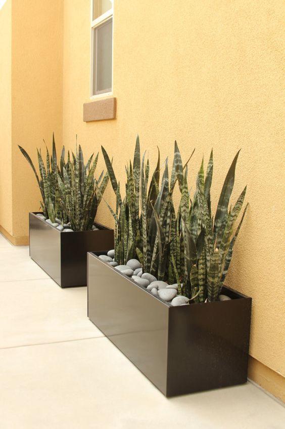 Jardineras para casas pequeñas contemporaneas