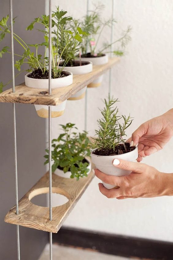 18 estupendas ideas para colgar tus plantas 16 curso for Ideas para colgar plantas