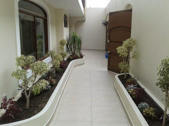 Como decorar pasillos exteriores for Iluminacion para jardines interiores