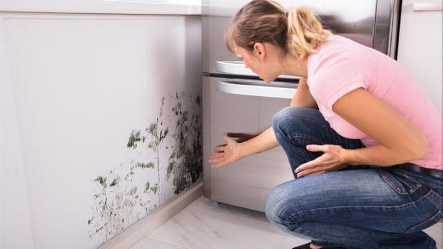Cómo eliminar las humedades en las paredes con aceite de árbol de té