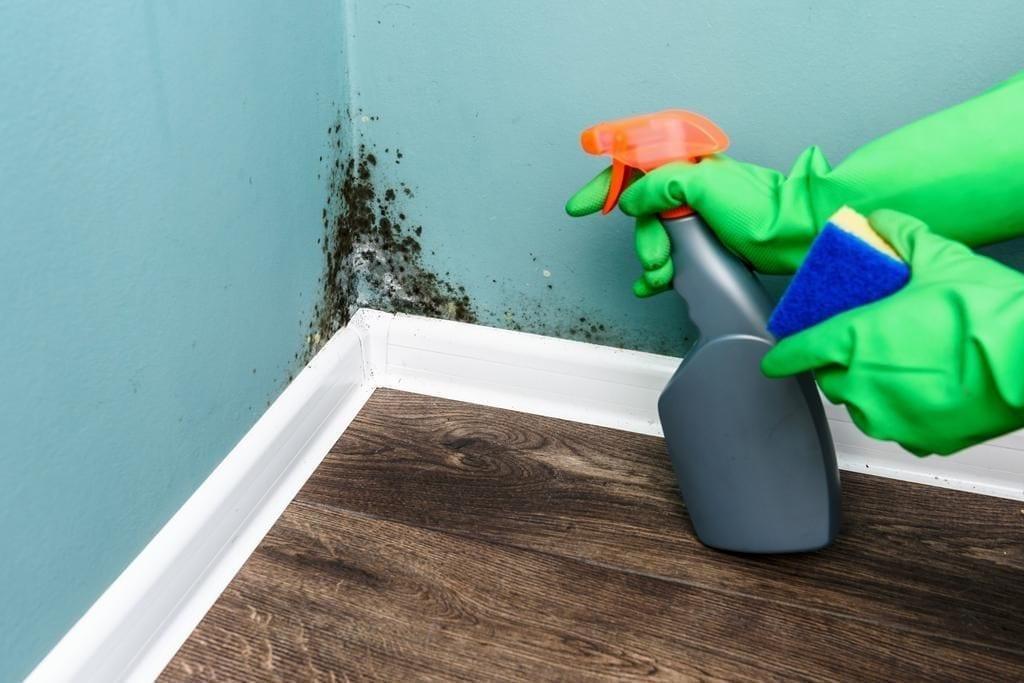 Cómo eliminar las humedades en las paredes con vinagre blanco