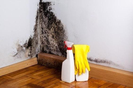 Cómo quitar la humedad de las paredes con remedios caseros