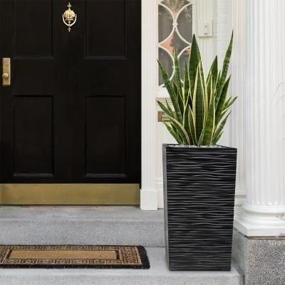 Decoración de entradas exteriores con plantas