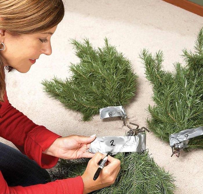 Etiquetar las diferentes partes del árbol