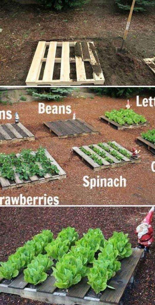 Ideas de organización para el jardín